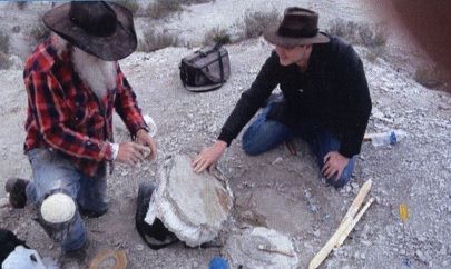 CreationExcavations