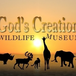 GodsCreationWildlifeMuseumHeadImage